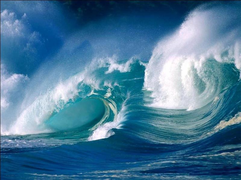 Bon, j'arrête avec mes questions et je vous laisse découvrir le monde en paix... Mais, juste une dernière : combien d'océans devez-vous encore découvrir ?