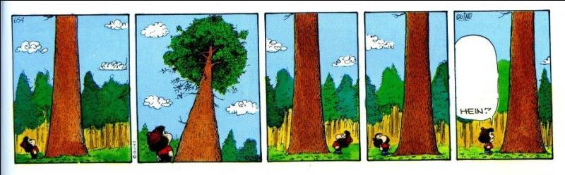 Très admirative et respectueuse de la nature, Mafalda est parfaitement capable d'engager la conversation avec la faune et la flore. Impressionnée par la hauteur de l'arbre, elle pose une question à ce colosse. Laquelle ?