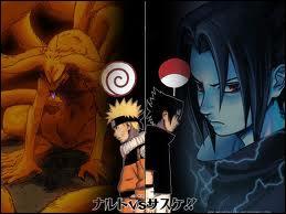 Où a lieu le combat entre Naruto et Sasuke ?