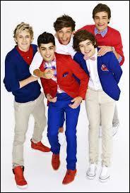 Lequel des One Direction n'a qu'un seul rein ?
