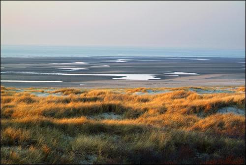 Magnifique baie formée d'étendues marécageuses qui attire de nombreux oiseaux migrateurs de toutes espèces, et qui abrite une colonie de phoques, c'est :