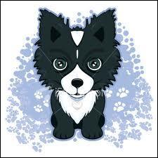 Catégorie  Races de chiens  : Quel est ce chien ?