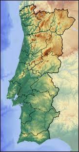 Le Portugal est un pays de la péninsule ibérique ne possédant de frontière qu'avec l'Espagne. Laquelle de ces couleurs est absent du drapeau portugais (armoiries exclues) ?