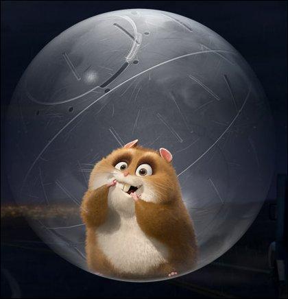 Plus facile, ce petit hamster vient du film ...