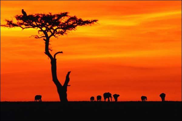 De quelle couleur est ce beau paysage ?