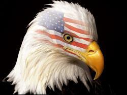 La patriotisme a ses limites ! Albert Einstein a, par moment, été apatride :
