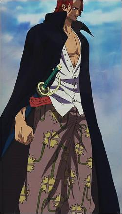 One Piece : les anniversaires (2)