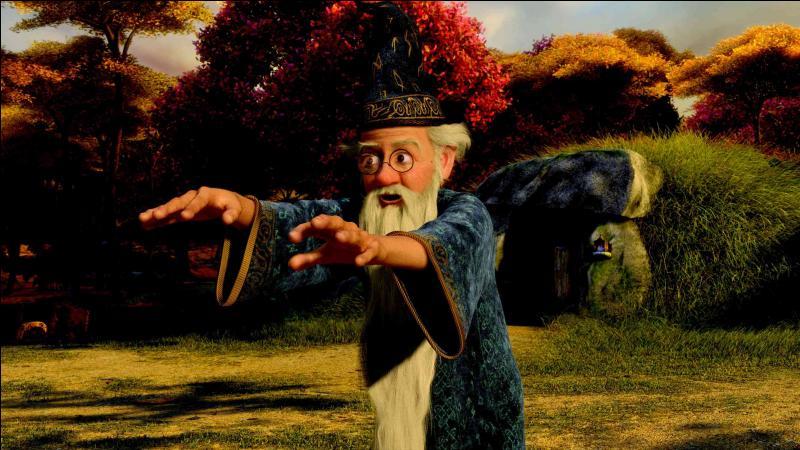 [Shrek 3] (***) En voulant annuler le sort ayant interverti les corps de l'Âne et du Chat potté, quelles parties du corps Merlin n'a-t-il pas échangées ?
