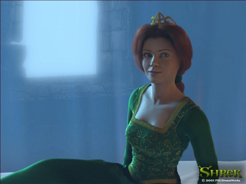 [Shrek 1] (**) Où se trouve l'endroit présumé du château ou est endormie la princesse Fiona ?