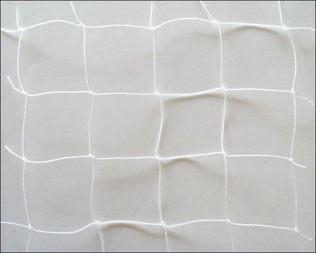 J'aime rentrer dans la cage aux filets blancs. Qui suis-je ?
