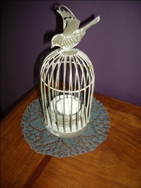 J'aime entrer dans la petite cage où j'essaie de trouver la sortie. Qui suis-je ?