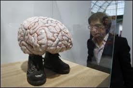 Une personne qui a un QI (Quotient Intellectuel) supérieur à 130 est considéré comme...