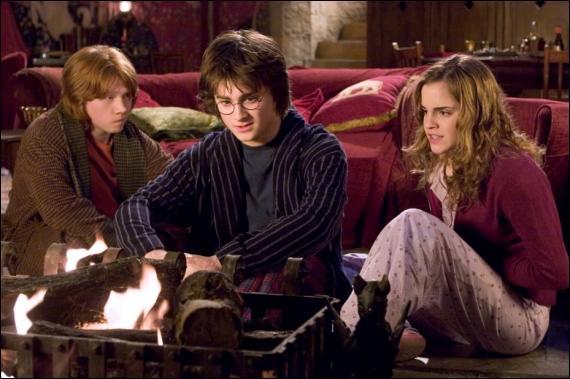 Dans le film, Harry est à la coupe du monde de Quidditch accompagné d'Arthur, Fred, George, Ron, Ginny et Hermione. Mais dans le livre, qui est là également ?