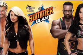 Tag Team Mixte : qui remporte ce match ?
