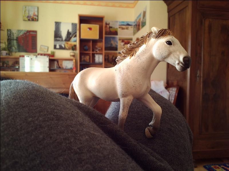 De quel cheval s'agit-il ?
