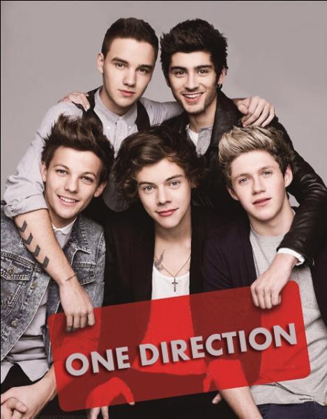 Comment nomme-t-on les fans de One Direction ?
