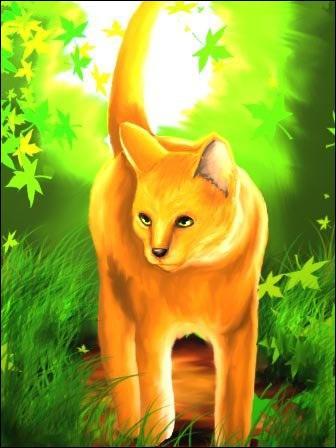 Qui est ce chat dont on entend beaucoup parler dans le premier cycle ?