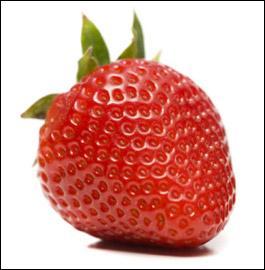 La fraise, vous diriez :
