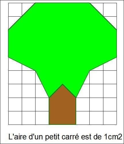 Quelle est l'aire de l'arbre avec le tronc ?