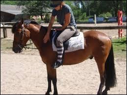 Dans le déplacement des hanches, la jambe qui recule s'appelle la jambe isolée.