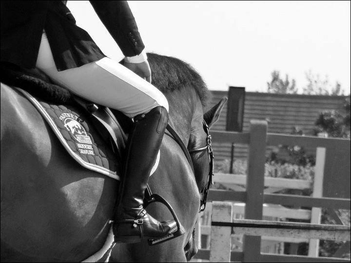 L'équitation est l'un des trois sports préférés des Français.