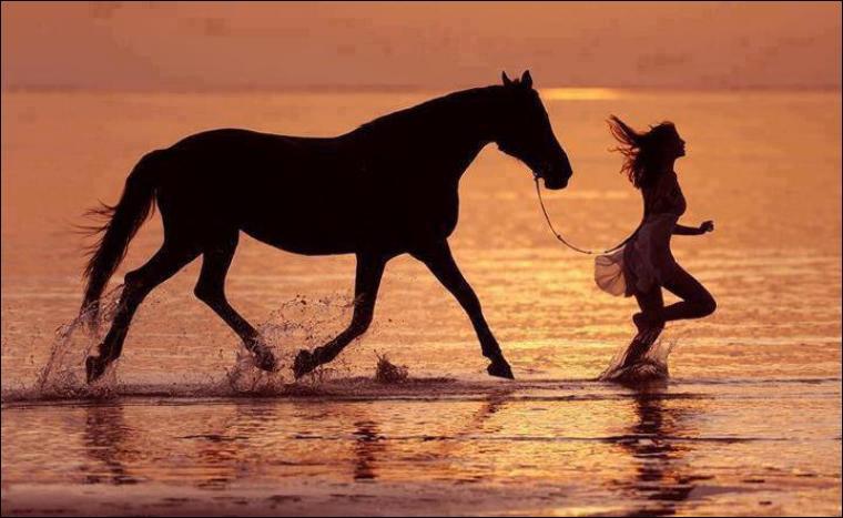 Je mène en main mon cheval toujours à droite.
