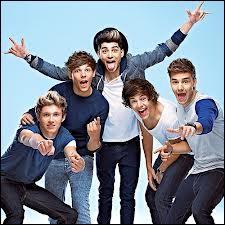 Ce groupe a aussi était connu grâce à X-Factor. Mais qui est-ce ?