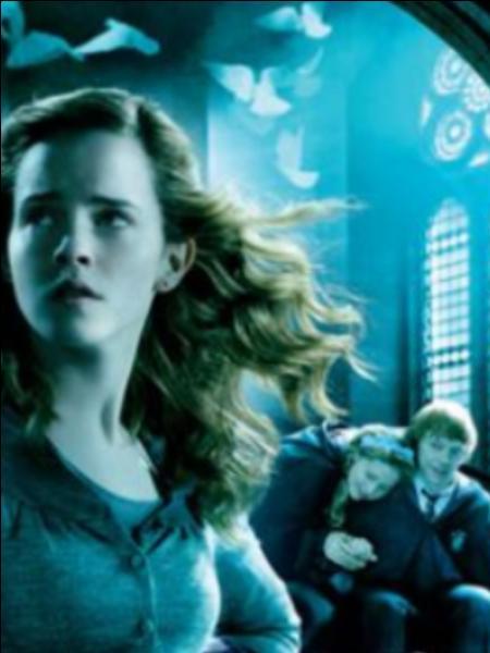 Hermione est blessée (émotionnellement ) quand Ron sort avec ... ? (Film 6)