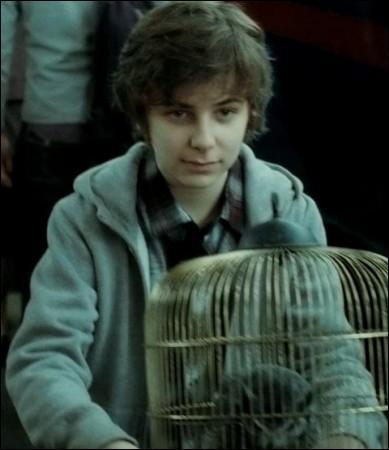 Comment se nomme l'aîné des enfants de Harry ?