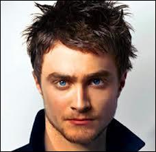 Qui joue le fils de James et Lily Potter ?