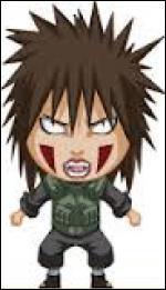 Je suis une jônin de Konoha. Je fais partie du clan Inuzuka et je suis la mère de Kiba & Hana. Comment me nomme-je ?