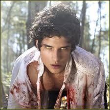 Dans la série «Teen Wolf», il joue le rôle de Scott McCall, un jeune lycéen qui se fait mordre par un loup-garou :