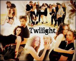 Dans «Twilight», quelle(s) information(s) est(sont) juste(s) ?