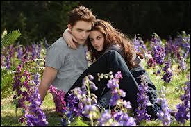 Dans «Twilight», quel(s) est(sont) le(s) bon(s) mot(s) clé(s) ?