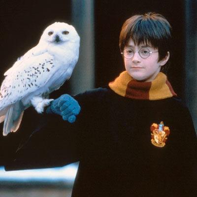 La rentrée d'Harry Potter