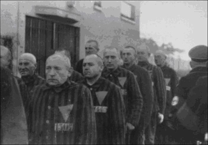 L'étoile jaune était le signe discriminatoire et de marquage, désignant les Juifs aux nazis lors des rafles.A votre avis, quel symbole avaient choisi les nazis pour « repérer » les homosexuels dans les camps de concentration ?