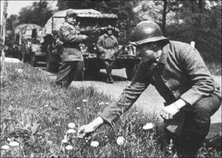 photo comment a commence la premiere guerre mondial