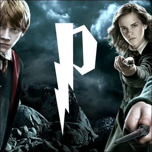 P. Quel est ce personnage sombre qui enseigne les potions au collège Poudlard ?