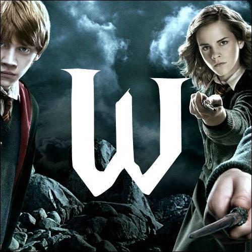 W. Quelle est la seule fille parmi tous les enfants de Molly et Arthur Weasley ?