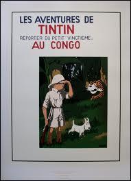 Dans  Tintin au Congo , Tintin donne brièvement un cours de mathématique. Mais dans la version originale de quel cours s'agissait-il ?