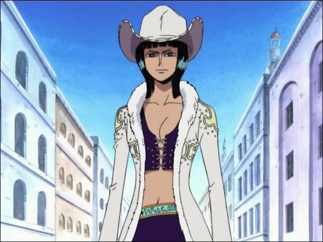 De quelle partie du monde est originaire Nico Robin ?