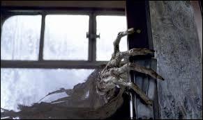Quand le détraqueur attaque Harry, dans le train, qui entend-il au moment de s'évanouir ?