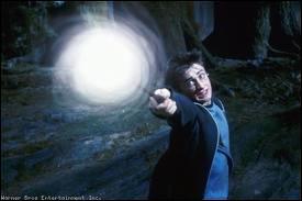 Quelle est la forme du patronus de Harry ?