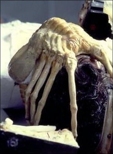 Dans  Alien, le huitième passager , quel est le membre de l'équipage qui se fait attaquer par un Facehugger, introduisant ainsi la Bête à l'intérieur du Nostromo ?