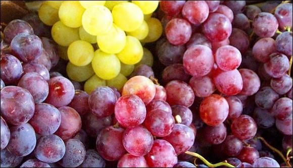 Le jus de raisin se transforme en vin sous l'action des :
