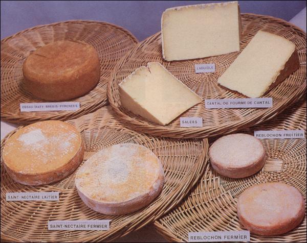 Quelle est la substance indispensable à la fabrication du fromage ?