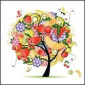 Il faut manger au moins 5 fruits et légumes…