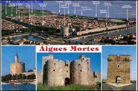 Je vous envoie une carte postale de la ville Gardoise d'Aigues-Mortes. J'étais donc en région ...