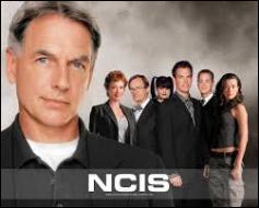Comment s'appelle le chef de l'équipe du NCIS ?