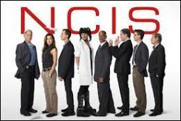 Que signifie le sigle NCIS ?